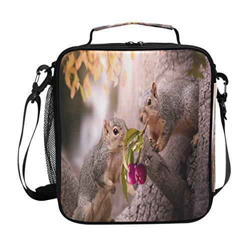 Two Beautiful Squirrels Lunch Bag Womens Insulated Lunch Tote Containers Zipper Square Lunch Box for Kids Men Adults Boys Girls