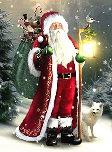 DIY Handwork Store 5D Crystal Diamond Painting Kits by Numbers Full Round Christmas Mosaic Cross Stitch Santa Claus Art Kits Handmade Handicrafts Wall Stickers(15.6