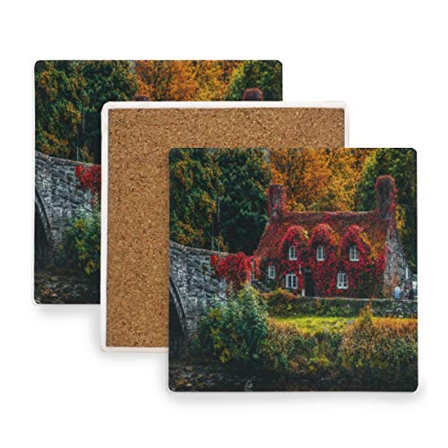 Architecture Autumn Bridge Coasters, Protect Your Furniture from Stains,Coffee, Cork Coasters Funny Housewarming Gift,Square Cup Mat Pad for Home, Kitchen or Bar 1 Piece -