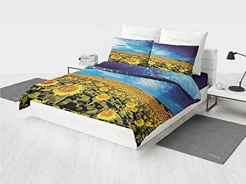 KaithLong Scenery Decor Mens Bedding Sets Exposure Photo Sunflower Garden Field with Skyline Summer Nature Image Printing Four Pieces of Bedding Set Yellow and Blue -