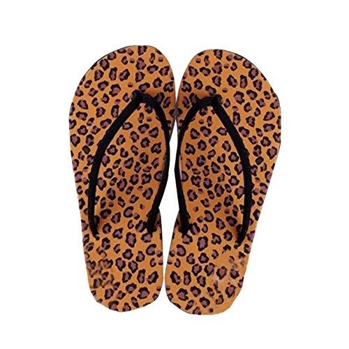 Chanclas Sandalias Zapatillas, FAMILIZO Zapatos Verano Mujer Sandalias Flip-Flops Zapatos Sandy Beach Baño Cooler Zapatillas Café