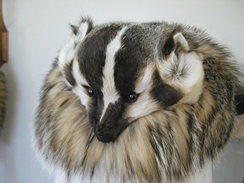 Badger Real Fur Hat with Full Face Real Pelt (Handmade) by Falcon