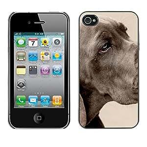 Be Good Phone Accessory // Dura Cáscara cubierta Protectora Caso Carcasa Funda de Protección para Apple Iphone 4 / 4S // Great Dane Large Dog Grey Pet