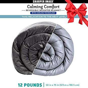 Image of Calming Comfort Reversible Cooling Weighted Blanket by Sharper Image- Dual Sided Viscose Bamboo & Soft Velveteen for Hot & Cold Sleepers, Heavy Blanket for Adults, BPA-Free Microbeads- 12 lbs Calming Comfort B07N6LCJJ7 Weighted Blankets