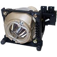 ApexLamps OEM Bulb With New Housing Projector Lamp For Benq Pb2120, Pb2125, Pb2220, Pb2225, Pe2240, Sl710S, Sl710X - Free Shipping - 180 Day Warranty