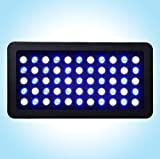 Hot Sale Vipar Dimmable led aquarium light 55x3W BLUE and WHITE Led Aquarium lamp for aquarium led lamp for aquarium (165W(55x3watt), Black)