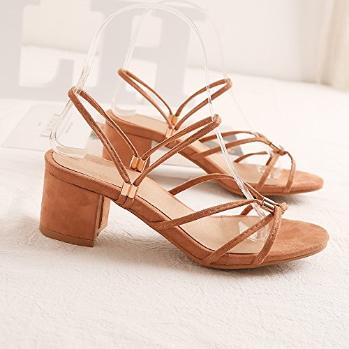 F Women Sandals, Coarse Heel Sandals, Comfortable Slippers, Lace Sandals Coffee