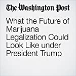 What the Future of Marijuana Legalization Could Look Like under President Trump | Christopher Ingraham