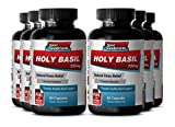 Organic Holy Basil Bulk - Holy Basil Extract 750mg - Herbal Mood and Energy Booster with Natural Holy Basil (6 Bottles 360 Capsules)