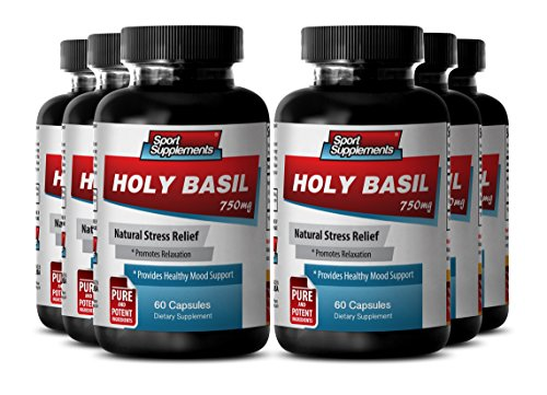 Tulsi Holy Basil - Holy Basil Extract 750mg - Balance and Calmness with Herbal Holy Basil Supplement (6 Bottles 360 Capsules) by Sport Supplement