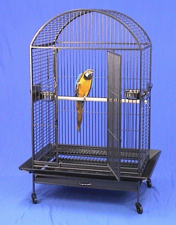 """Kauai Kastle Dometop Large Bird Cage with Stand - 36""""W X 26""""D X 64""""H - Green Vein by BirdCages4Less"""