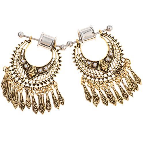 - Prettyia 2Pcs Stainless Steel Screwed Ear Gauges Tunnels Plugs Earrings Dangle Tribal Expanders Stretchers for Ear Piercing Jewelry, 2G / 0G / 00G 12mm - 6mm
