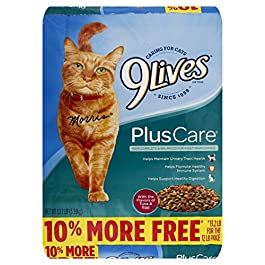 9Lives Plus Care Dry Cat Food, 13.3 Lb