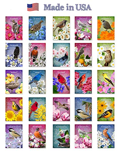 - US STATE BIRDS AND FLOWERS Set of 50 postcards. United States bird and flower symbols post cards variety pack. Made in USA.