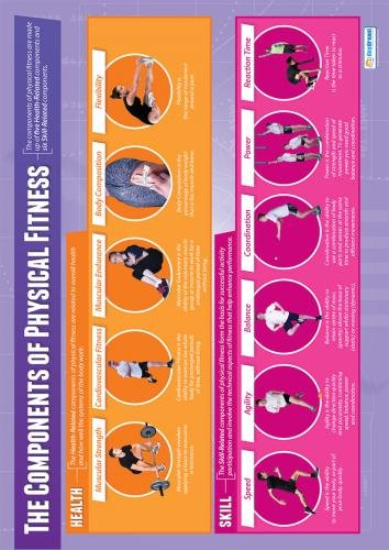 Components of Physical Fitness | Physical Education Chart in high gloss with heavy stock lamination (33