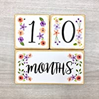 Baby Age Blocks Milestone Blocks Solid Wood Girl Pink and Purple Flowers by Stick'em Up Baby (5 in)