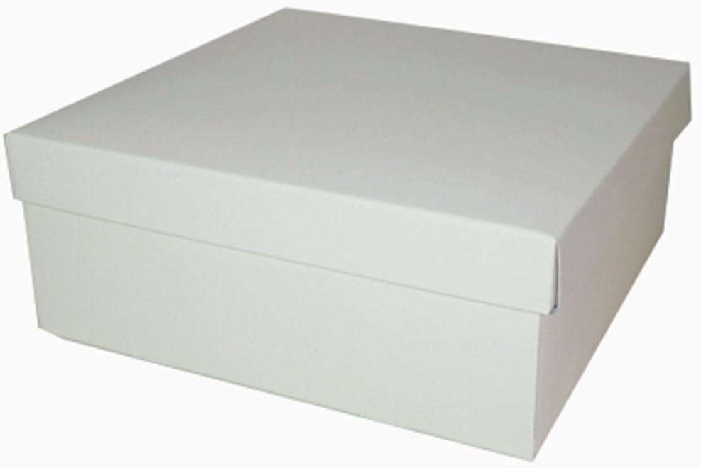 Scatole 2 Cajas Fondo Tapa 30 x 30 x 12 cm: Amazon.es: Hogar