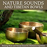 Tibetan Singing Bowls Complete Healing Session (1H Full Healing Therapy with Singing Bowls)