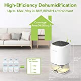 AUZKIN Small Dehumidifier for 2200 Cubic Feet