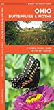 Ohio Butterflies & Moths: A Folding Pocket Guide to Familiar Species (A Pocket Naturalist Guide)