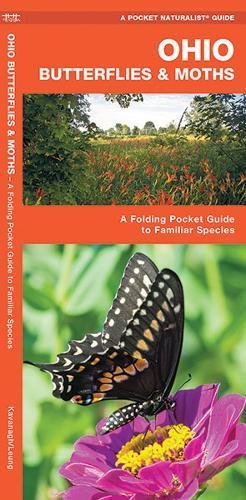 Ohio Butterflies & Moths: A Folding Pocket Guide to Familiar Species (A Pocket Naturalist Guide) -