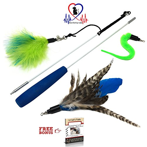 Pet Fit For Life Feather Teaser and Exerciser for Cat and Kitten - Cat Toy Interactive Cat Wand 2 Section 3 ()