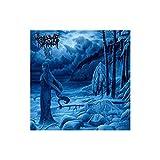 Woods Of Infinity - Förlat CD