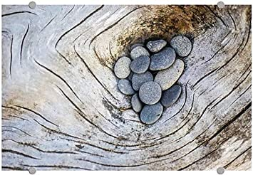 | 27x18 CGSignLab Circle CaptureDriftwood and Rocks II Premium Acrylic Sign 5-Pack