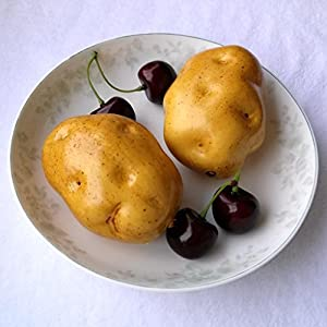 Gresorth 6pcs Artificial Potato Lifelike Fake Vegetable Home Kitchen Party Food Toy Decoration Model Props 2