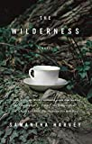 (THE WILDERNESS ) BY Harvey, Samantha (Author) Paperback Published on (04 , 2010)