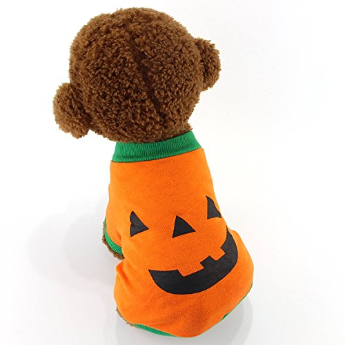 MEWTOGO Pet Dog Cat Cotton Halloween Pumpkin Costume - Comfortable Cute Dog Cat T Shirt(Pumpkin shirt, M) - Dog Pumpkin Costumes