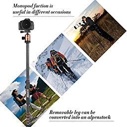 ZoMei Z818C Light Weight Portable Carbon Fiber Travel Tripod 65 Inchs Height Complete Tripod Come With Ball Head Carry Case for Digital/ Camcorder / DSLR / SLR / Video Camera(Orange)