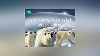 Frozen Planet - Staffel 1 [OV]