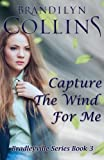 Capture The Wind For Me (Bradleyville Series) (Volume 3) Livre Pdf/ePub eBook