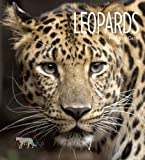 img - for Leopards (Living Wild (Hardcover)) book / textbook / text book