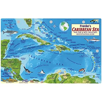 Amazoncom Caribbean Sea Fish Id Card With Island Map In By - Caribbean sea map