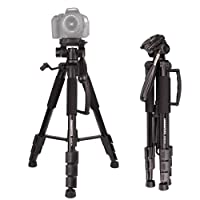 CAMBOFOTO 62'' Lightweight Travel Tripod for Camera with built in Spirit Level and 3-Way Panhead Tilt Motion for SLR/DSLR Canon Nikon Sony Olympus etc