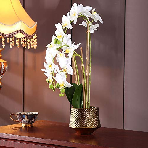 Phalaenopsis Flower Orchid (Large Artificial Orchid Phalaenopsis Arrangement Flower Bonsai with Golden Vase Table Centerpiece(White-3))