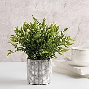 Cyrra 8 Inch high Bathroom Vanity Decor Ideas Indoor Artificial Grass Plants for Shelf Nandina 6