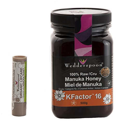 Wedderspoon Manuka Honey From New Zealand. Raw, Unpasteurized, Antibacterial, Non-GMO, KFactor 16 (17.6oz) + Lip Balm w/ Pure Organic Manuka (Dry Organic Honey)