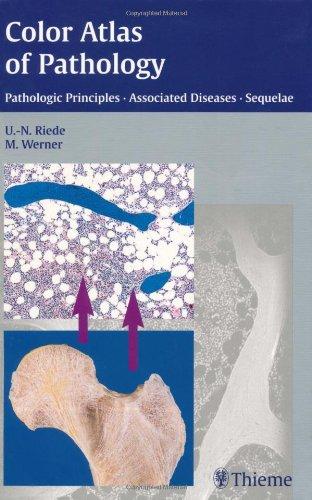 Read Online Color Atlas of Pathology Pathologic Principles, Associated Diseases, Sequelae ebook
