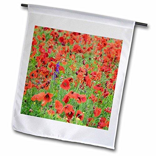 3dRose Danita Delimont - Flowers - Sea of red Poppy flowers, Mount Olive, North Carolina, USA - 18 x 27 inch Garden Flag (fl_279272_2) (Field Pole Mount Single)