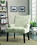 Coaster Home Furnishings 902149 Casual Accent Chair
