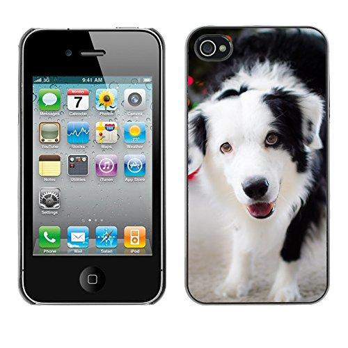 Premio Sottile Slim Cassa Custodia Case Cover Shell // F00009578 chien // Apple iPhone 4 4S 4G