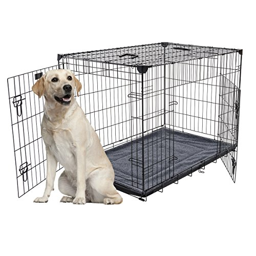 Lucky Dog Training Crate with Stabilizers, 42