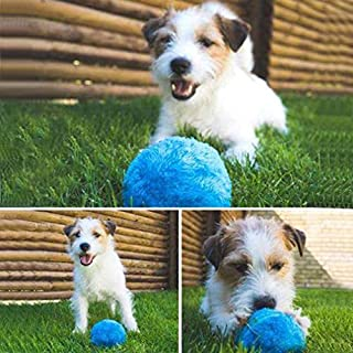 GAOWILL Magic Roller Ball Toy Automatic Roller Ball Magic Ball Dog Cat Pet Toy (1 Rolling Ball + 4 Color Ball Cover)