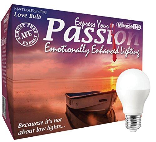 Passion Led Lighting International in US - 8