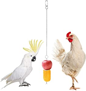 SAWMONG Stainless Steel Bird Fruit Holder, Chicken Coop Veggies Hanging Skewer, Parrot Food Feeder for Cage, Cockatiel Vegetable Stick for Outside, Hen Accessories Chick Foraging Toy Outdoor