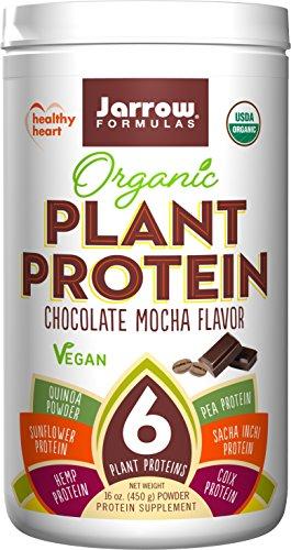 Jarrow Formulas Organic Protein Chocolate
