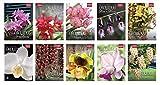 capa de Coleção Rubi - Orquídeas da Natureza